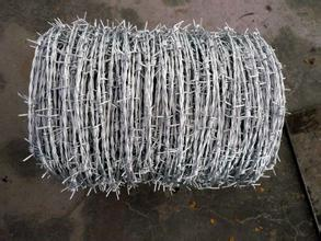 Barbed Wire Fence Introduce