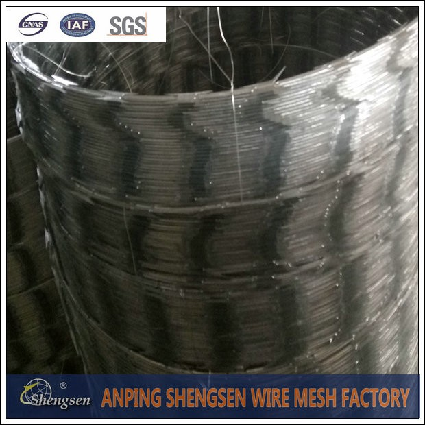 china shengsen razor barbed wire
